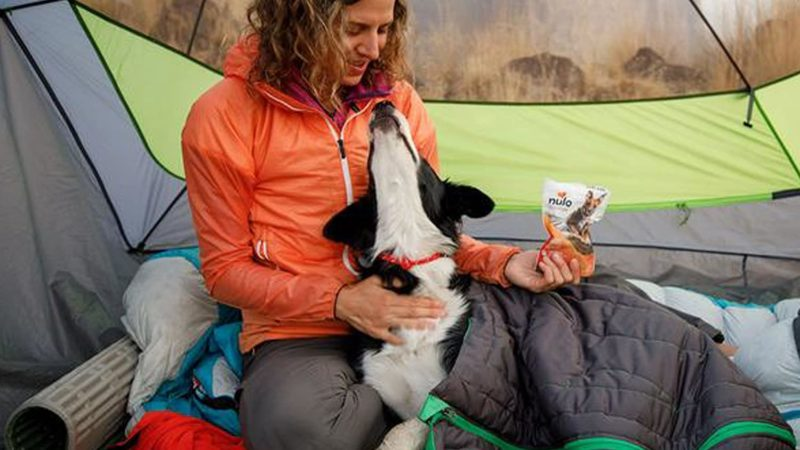 Dog Sleeping Bag Bed – Best For Tent & Backpacking