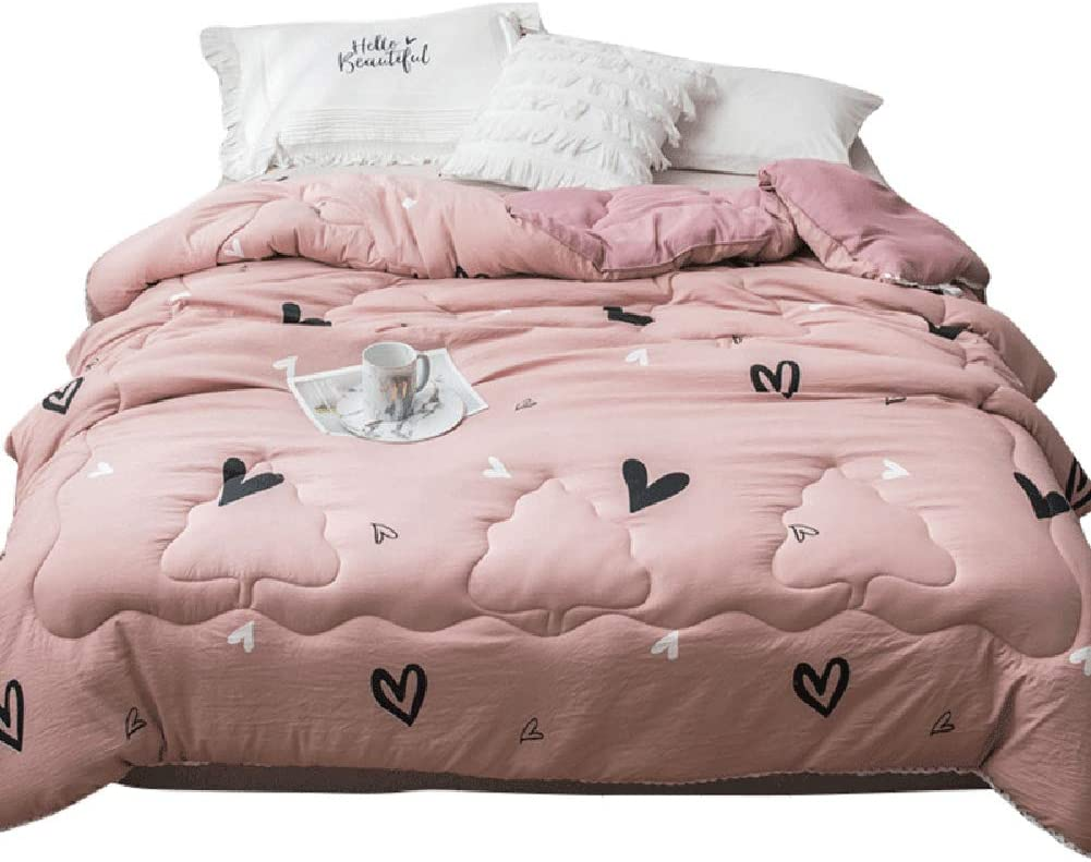 Xiaozhan All-Season Twin Xl Comforter